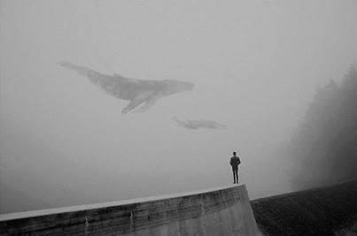 image by Martin Vlach